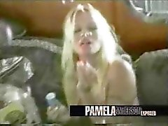 Pamela Anderson And Tommy Lee Uncensored