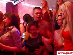 Party babes fucked in orgy