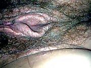 Juicy hairy girlfriend pussy