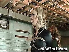 Wild Naughty Extreme Bdsm Sadistic Sex