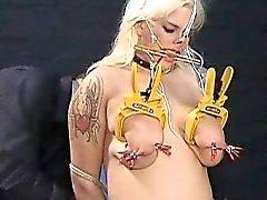 Busty amateur BDSM slave