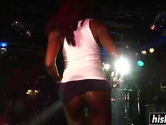 Sexy girls dance on the stage