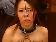 Kinky Oriental babe with nice tits gets tied up and covered
