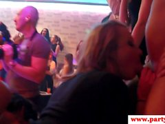 Cocksucking euro babe jerking cock at party