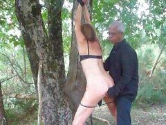 niveau 4 - punie dans les bois