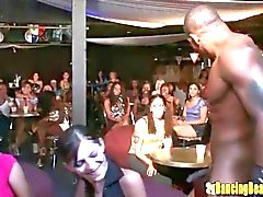 Dancing Bear Orgy Night at the Stripclub